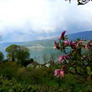 Tour du lac de Bienne